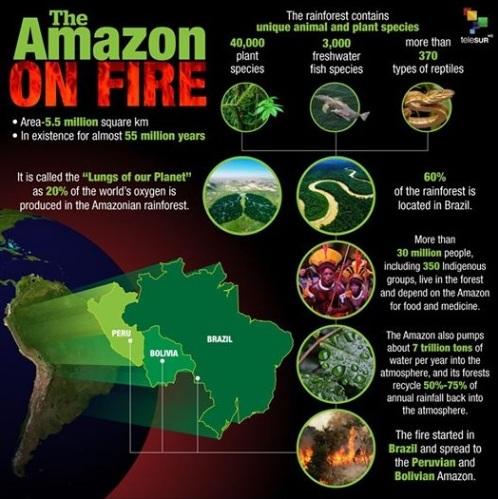 Amazon Fire.jpg
