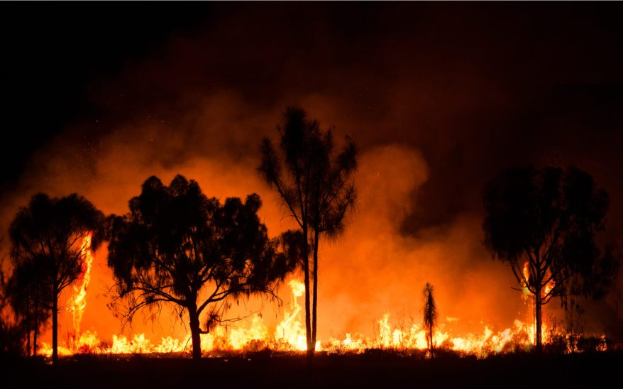 Bush fire in Australia.jpg