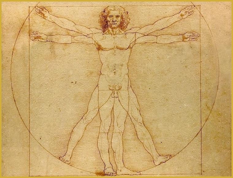 The Vitruvian Man.jpg