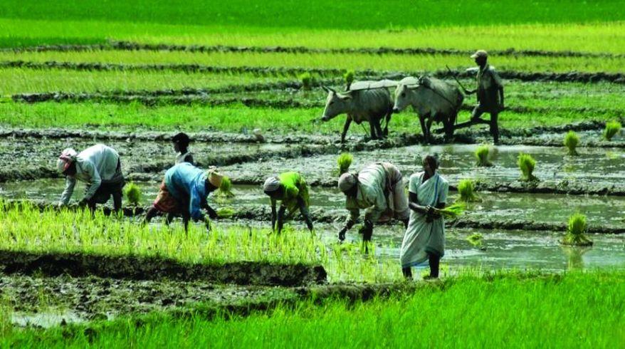 Agrarian Economy.jpg